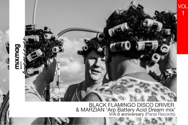 PREMIERE: Black Flamingo Disco Driver & Marzian - Arp Battery (Acid Dream Mix) [Panal Records]