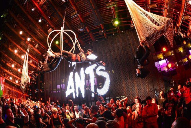 ANTS expande su hormiguero a Madrid y Barcelona